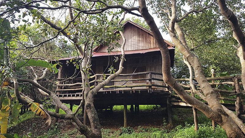 Alojamiento en Banlung, Camboya - Tree Top Eco-Lodge