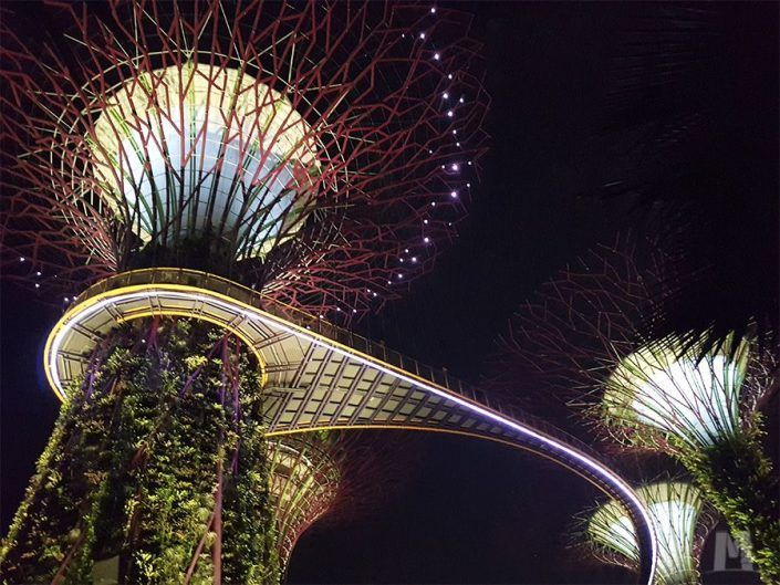 Gardens by the Bay- Jardines de Singapur