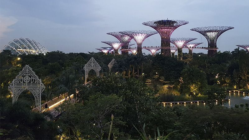 Gardens by the Bay, los Jardines de Singapur